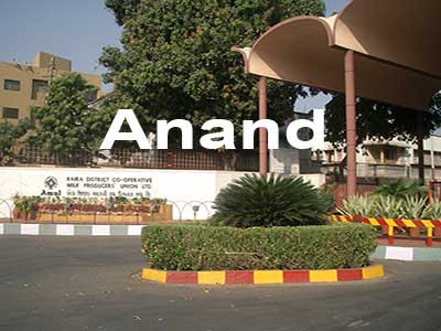 Vacuum Packaging box exporter in Anand